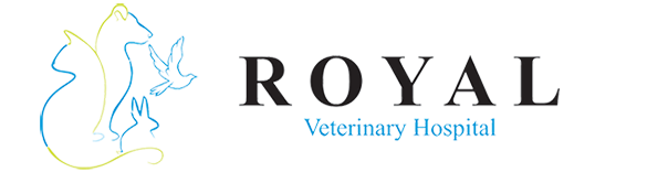 Logo for Veterinarians Calgary, Alberta | Royal Veterinary Hospital